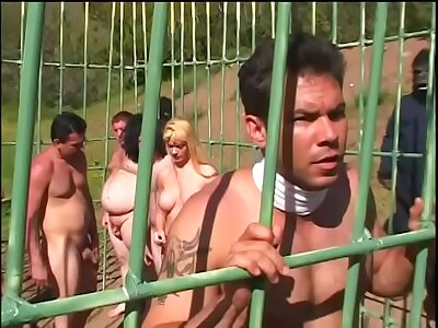 Young redhead wirth small boobs Film over Shagwell added to a dude fuck in a cage into the open air on the planet for monkeys